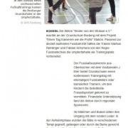 Fränkische Nachrichten vom 20.06.2012