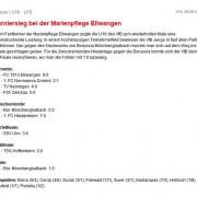 VfB Stuttgart vom 29.06.2013