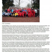 nokzeit.de (Neckar-Odenwald-Kreis-Zeitung vom 19.12.2013