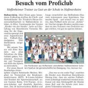 Rhein-Neckar-Zeitung vom 29.10.2014