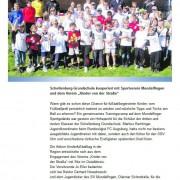 Südkurier vom 27.04.2012